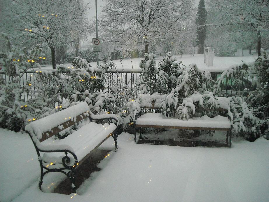 Casa di riposo campostrini giardino d inverno - Giardino d inverno prezzo ...